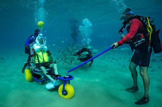 Sea Trek Diving for People with Limited Mobility in Lanzarote