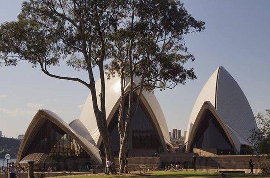 Visite guidée exclusive à Sydney