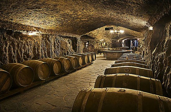 Wine cellar visit with tasting and lunch