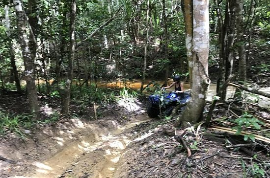 Cairns ATV Adventure Tour y Morning...