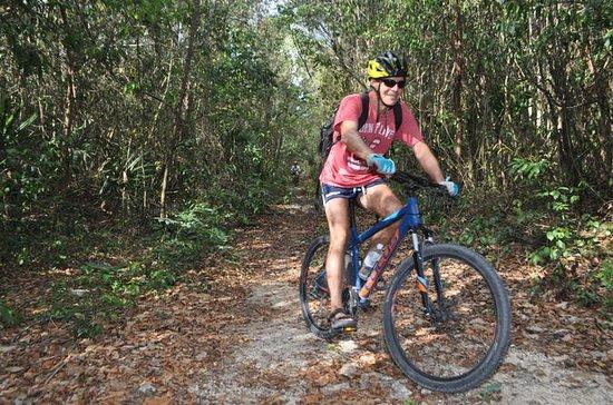 初心者のマウンテンバイクマヤのジャングルツアーとシーノテスイミング