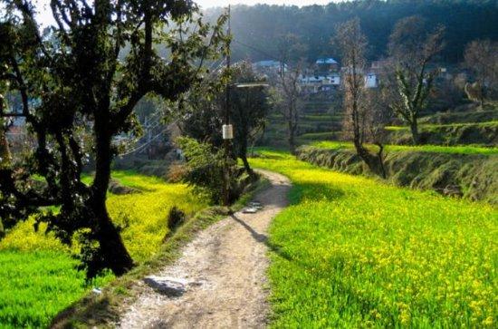 Escursione di un giorno a Dharamkot e