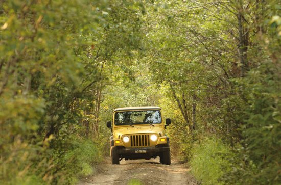 Bodrum Off-Road 4WD Jeep Safari with...