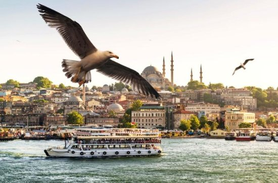 プライベート全日イスタンブールボスポラス海峡とアジアツアー