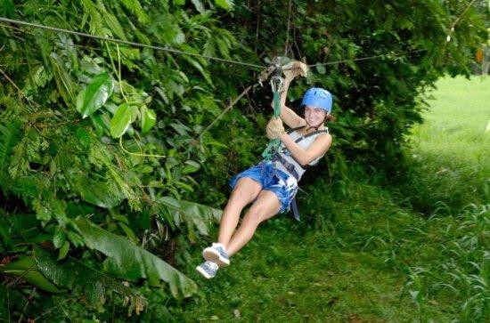 Canopy Tour et Safari dans la rivière...