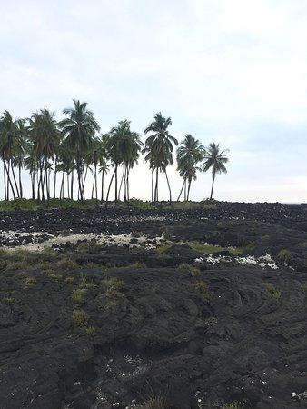 Pu'uhonua O Honaunau National Historical Park: photo0.jpg