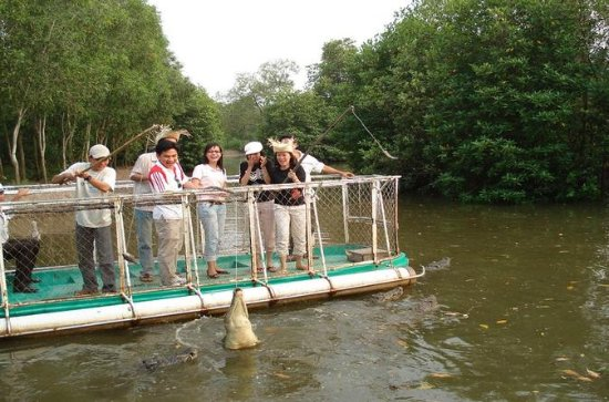 Mangrove Forest and Monkey Island Full...