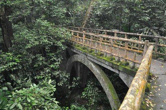Ecotourism - Cuc Phuong National Park