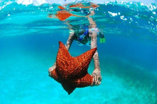 Les 5Perles de la mer des Caraïbes...