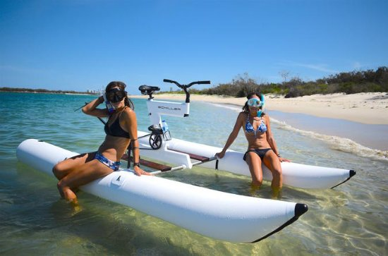 Gold Coast Water Bike and Snorkeling...