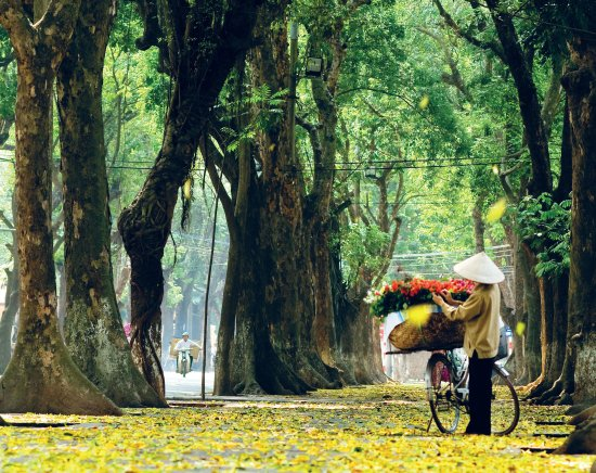Hanoi Explore Travel