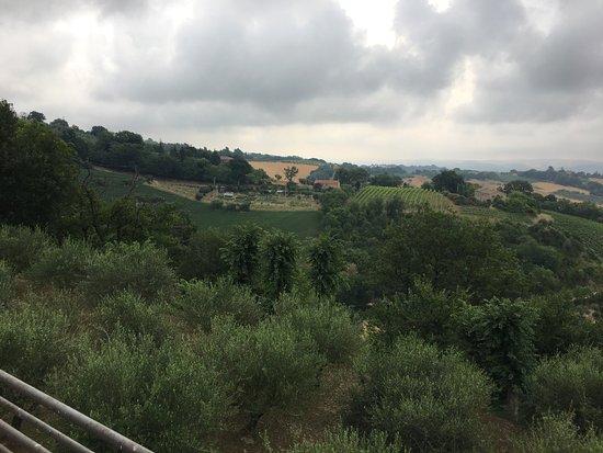 Serrungarina, Itália: photo3.jpg