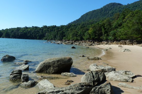 Permai Rainforest Resort: stunning and pristine beach 2 mins walk from treehouse
