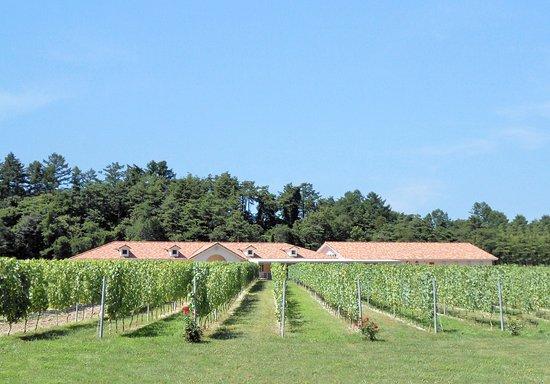Azumino Winery