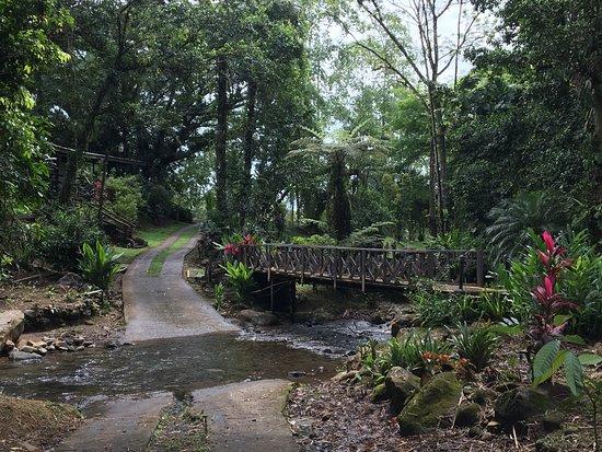 Chachagua, Kosta Rika: photo1.jpg