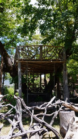Its a Burl: Tree house complete with yard and fence and swing chair!