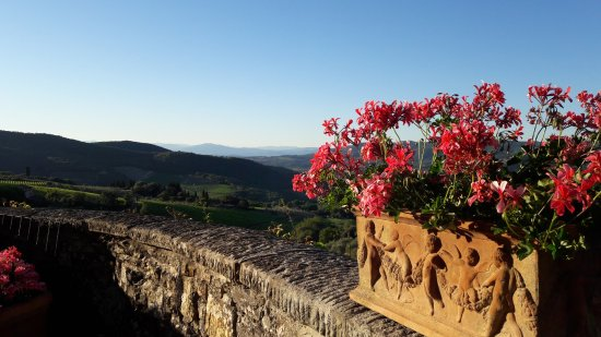 Villa Sangiovese: From the dining terrace