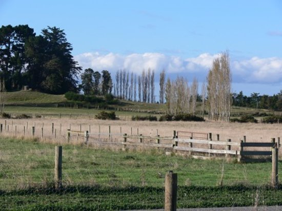 Rolleston, Nueva Zelanda: Nearby farmland just 15 minutes away