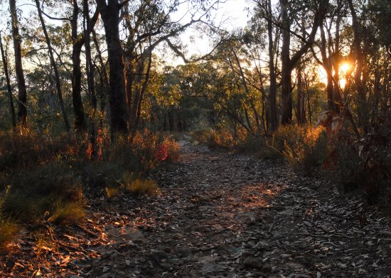 Adelaide Hills, Australia: The track above the waterfall near sunset.