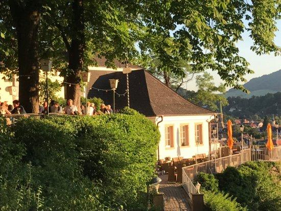 greiffenegg schl ssle mit kastanien biergarten nach s freiburg altstadt rechts liegend. Black Bedroom Furniture Sets. Home Design Ideas