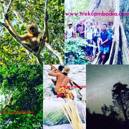 """Banlung, Cambodja: '' Green Jungle Trekking Tours 100%l locally operated """""""