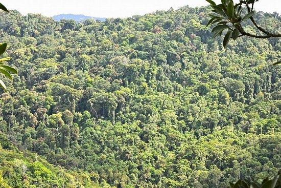 "Banlung, Cambodja: ""Virachey Jungle Panoramic view!"