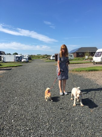 Anstruther, UK: Some views of this lovely caravan site. We have booked in for the season and hope to be back nex