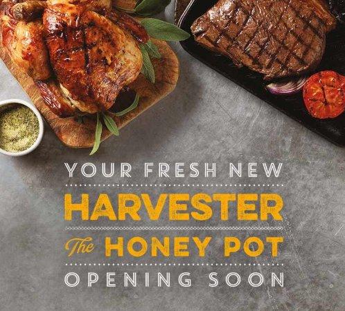 Basildon, UK: The Honey Pot Harvester