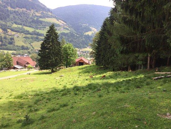 Feld am See, Austria: photo2.jpg
