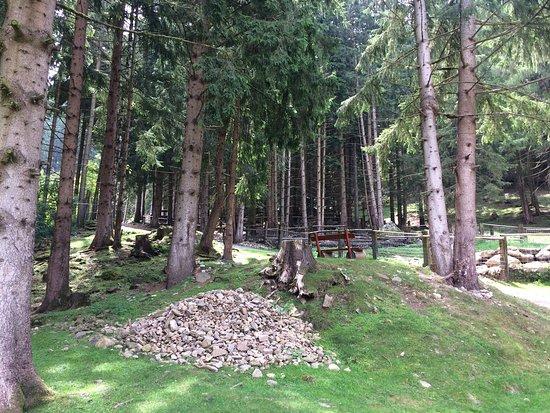 Feld am See, Austria: photo5.jpg