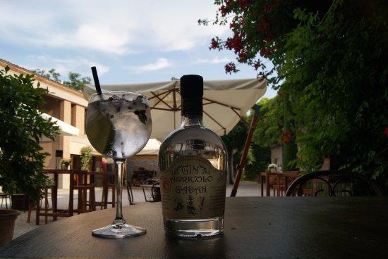 Ronchi dei Legionari, Italy: Il Gin agricolo Adan, direttamente per noi dal Piemonte!