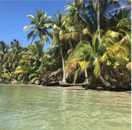 Bocas del Toro, Panama: Playa