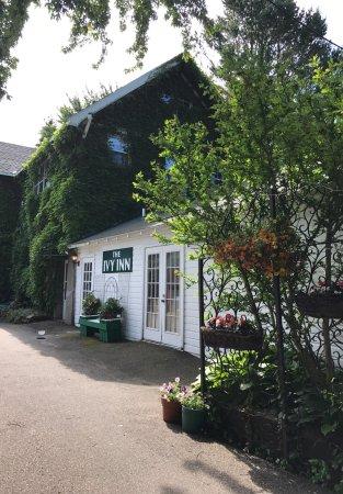 Ivy Inn : photo0.jpg