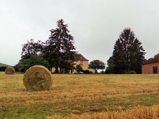 Saint-Avit-Senieur, Francia: ballots de la prairie