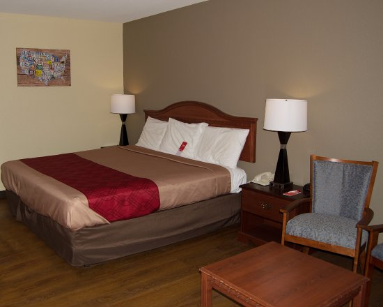Econo Lodge: King Bedroom