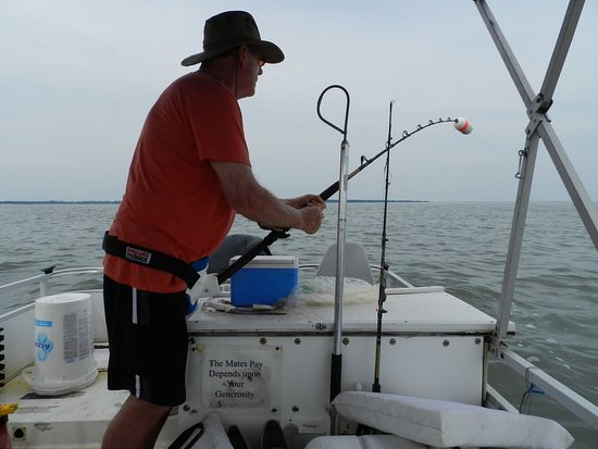 Fish Tales Fishing Charters Chincoteague Island Fish