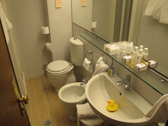 Small bathroom. Note the rubber duck in the sink. - Picture of Hotel ...