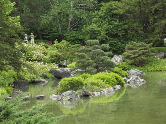 le bassin - Photo de Jardin japonais, Montréal - TripAdvisor