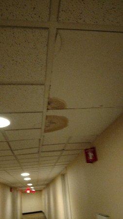 Matamoras, Πενσυλβάνια: Hallway