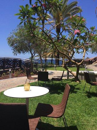 Img 20170621 114405 photo de melia jardines del teide costa adeje tripadvisor - Jardines del teide ...