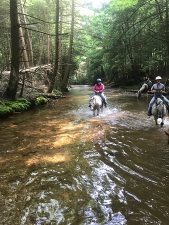 Clarion, Pensilvania: best part of our 2 hour trail ride