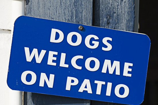 Edenton, Carolina del Norte: Sinn says it all.  We love well behaved pets and they are always welcome.