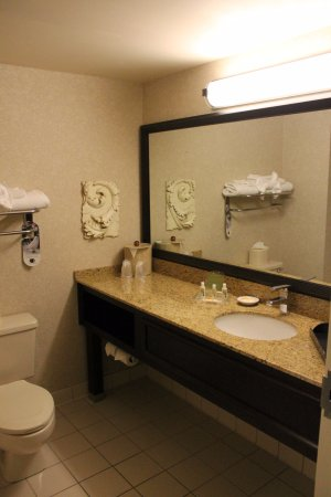Hilton Garden Inn Sarasota - Bradenton Airport: Sarasota, Hilton Garden Inn - Bathroom