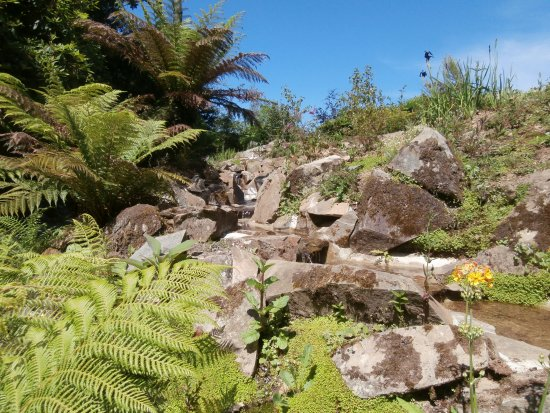 St Austell, UK: Lost gardens