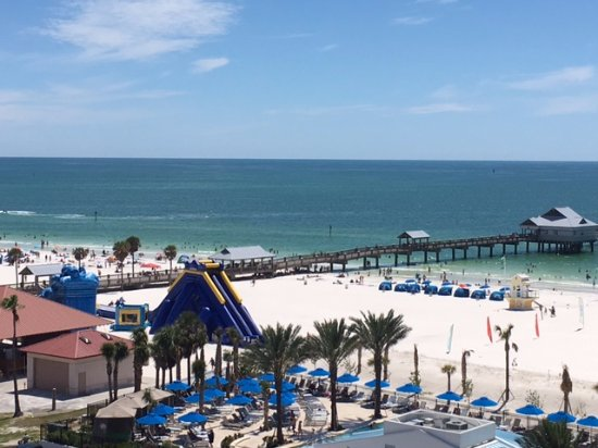picture of hilton clearwater beach resort. Black Bedroom Furniture Sets. Home Design Ideas