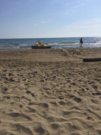 Ardea, Italy: Mene Beach Club