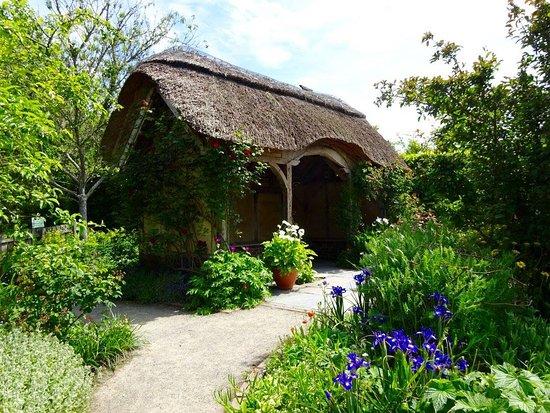 Great Torrington, UK: Rosemoor 1