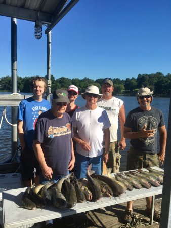Benton, KY: Lots of great fishing in the bay