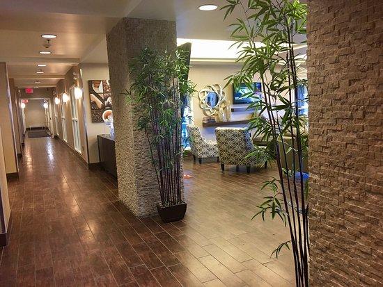 Comfort Suites Saskatoon: photo0.jpg
