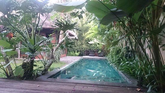 Luwak Ubud Villas Εικόνα
